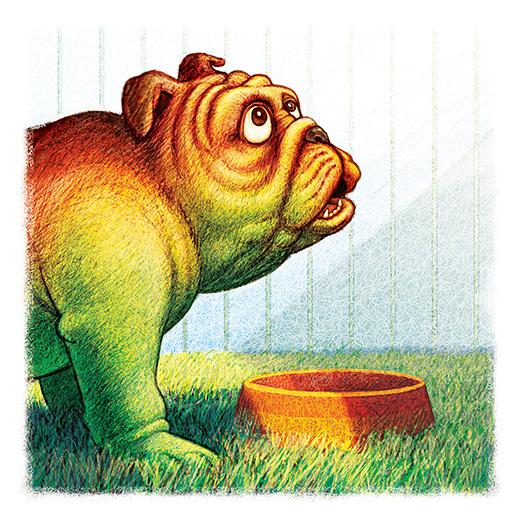 bulldog-page-2